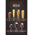 beer types a visual guide to types beer vector image vector image