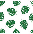 monstera seamless leaves pattern isolated on white vector image vector image