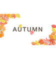 paper cut autumn leaves on white background vector image vector image