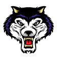 Roaring wolf head mascot in cartoon style