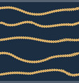 rope line seamless pattern vector image