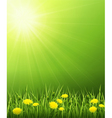 Solar landscape vector image vector image