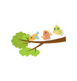 three little birds on tree branch spring season vector image