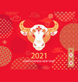 2021 chinese new year red greeting card with bull vector image vector image