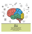 colorful poster the brain with your different vector image vector image