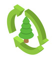 fir tree icon isometric style vector image vector image