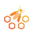 bee icon with honeycomb logotype isolated vector image