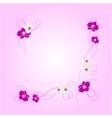 arrangement orchid flowers