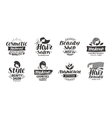beauty salon logo set icons beautiful labels vector image vector image