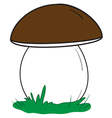 Big white mushroom vector image vector image