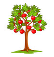 cartoon apple tree isolated on white background vector image vector image