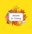 cartoon autumn elements set and leaves vector image vector image