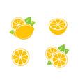 lemon citrus fruit on white background vector image vector image