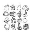 fruit set black line art vector image