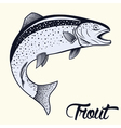 Jumping trout isolated vector image