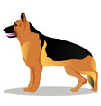 german shepherd cartoon dog vector image