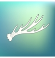 Hand drawn vintage deer horns Eco style hipster vector image