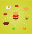 isometric burger ingredients infographic vector image