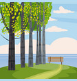 rural country landscape with trees hills branch vector image