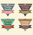 Set of Triangle Vintage Retro Badge vector image vector image