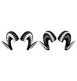 set ram horns two templates for design vector image