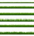 grass border collection isolated white background vector image vector image