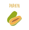 Papaya isolated on white vector image vector image