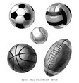 sport ball collection hand draw vintage style vector image