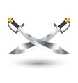 two cross pirate sword on a white background vector image