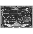Vintage Blackboard English Cut of Pork vector image