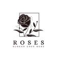 vintage minimalist framed rose flower logo icon vector image vector image