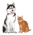 best friends Cat and Dog vector image
