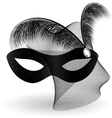 black carnival half-mask and feathers vector image vector image