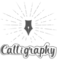 callygraphy vector image