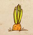 Carrot Cartoon vector image