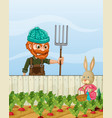 farmer angry at rabbit harvest radish vector image vector image