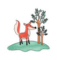 fox cartoon in forest next to the trees in colored vector image vector image