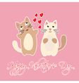Happy Valentines Day with hearts and cats vector image vector image