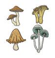 mushroom set sketch engraving vector image vector image