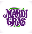 poster for mardi gras carnival vector image vector image