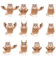 set flat owl icons vector image vector image
