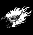 silhouette scorpion with fire vector image