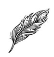 vintage bird feather tattoo template vector image vector image