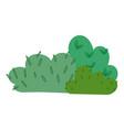 bush foliage natural vegetation isolated icon vector image vector image