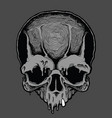 cartoon decorative human skull vector image vector image