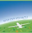 foz do iguacu flight destination vector image vector image
