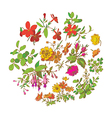 Meadow flower and leaf wreath isolated on white vector image