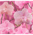 Seamless Floral Background with Garden Orchid vector image