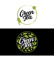 Set of Green Tea hand written lettering with vector image vector image