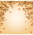 tree branches and orange leaves vector image